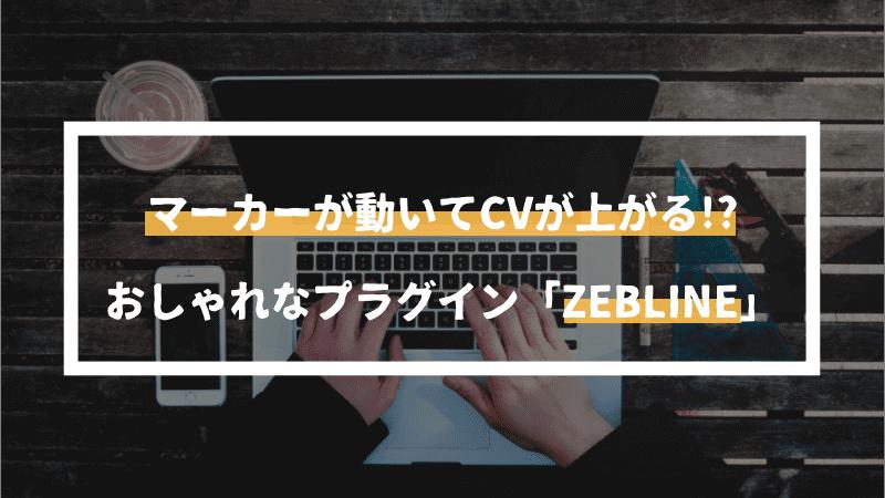 WordPress初心者でも使えるおしゃれなプラグイン「ZEBLINE」を紹介【CV率アップ対策】